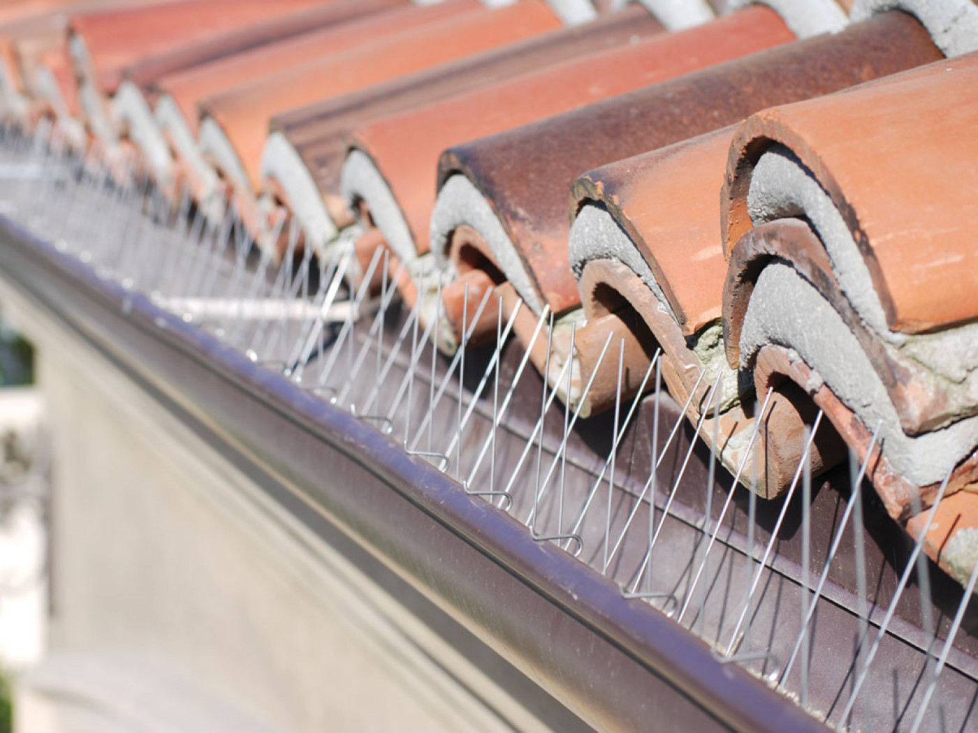 Simple Tips On Replacing Gutter Spikes Around Your Home