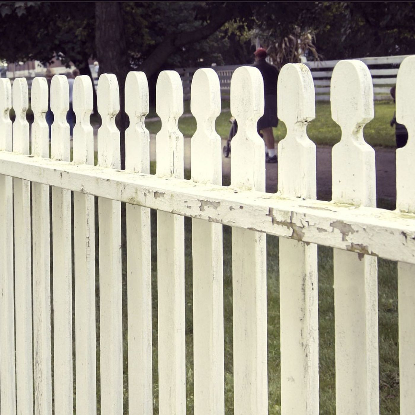 You Have Lots of Fencing Choices for Your Home
