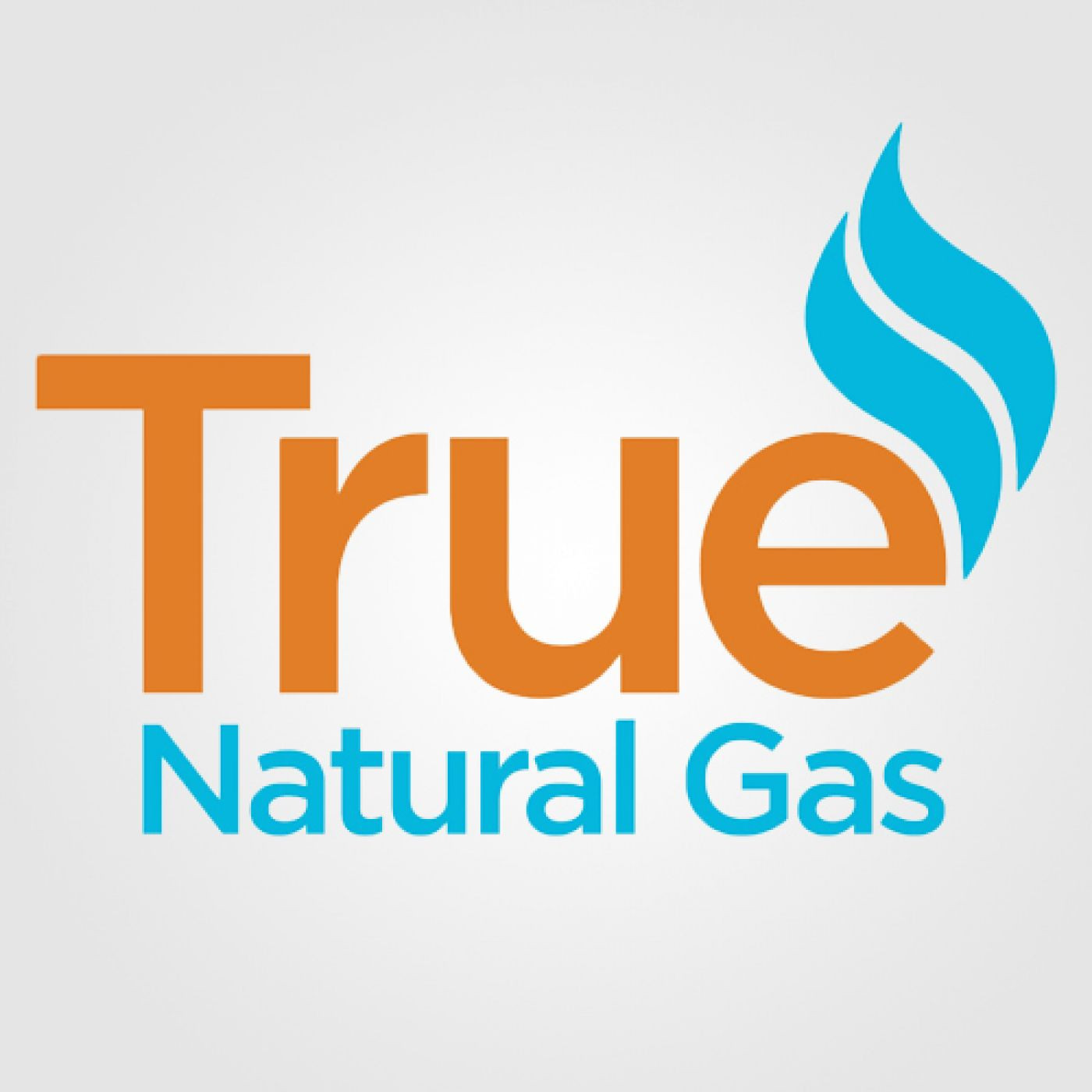 Be Smart, Save Money, and Stay Warm with True Natural Gas