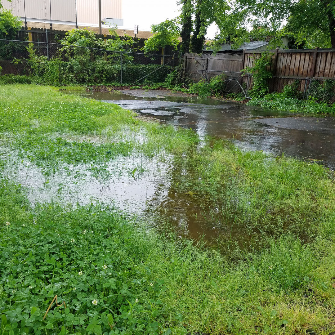 Avoid Flooding with Effective Yard Drainage Solutions