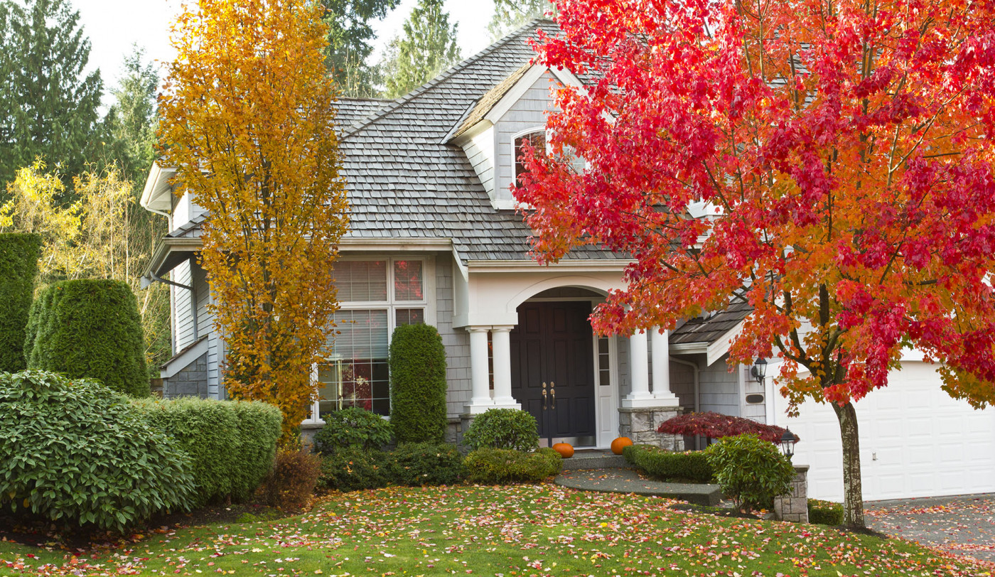 Getting Your Roof Ready for Fall