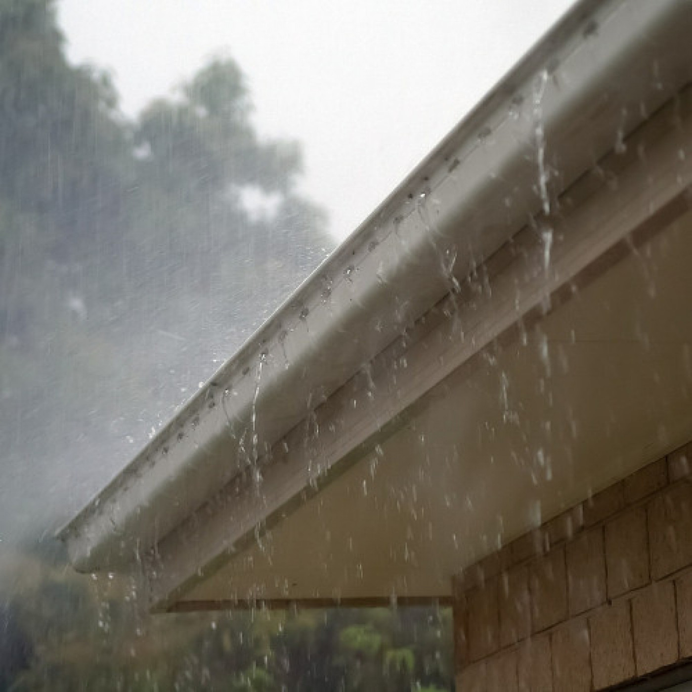 Safety Tips for Fall Gutter Cleaning