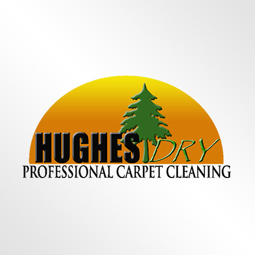 Hughes Professional Dry Carpet Repair & Restretching logo