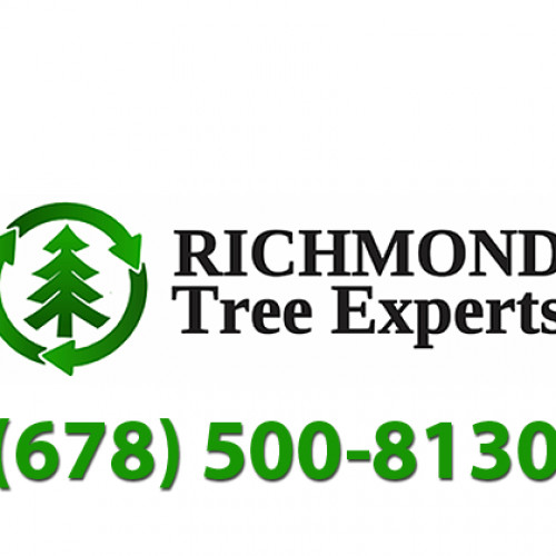 Richmond Tree Experts logo
